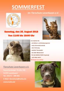 TSV Sommerfest 2018